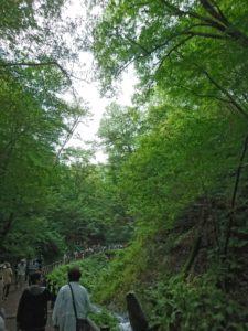 白糸の滝画像