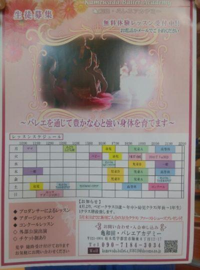 亀和田バレエのフライヤー画像
