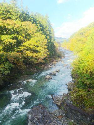 大芦川画像