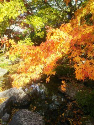 古峯神社境内画像