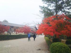 法隆寺参道画像