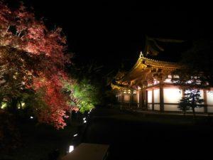 東寺ライトアップ画像