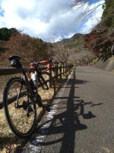 サイクリングコース画像