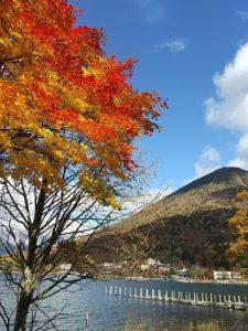 中禅寺湖と男体山画像
